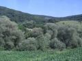 siebenbuergenreise-2011-192